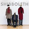 shibboleth-experror-340px
